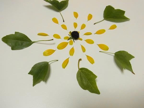 黄色花の花火