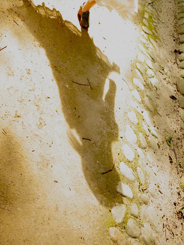 アンティークワンピースの長い影