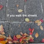 街を歩けば 15