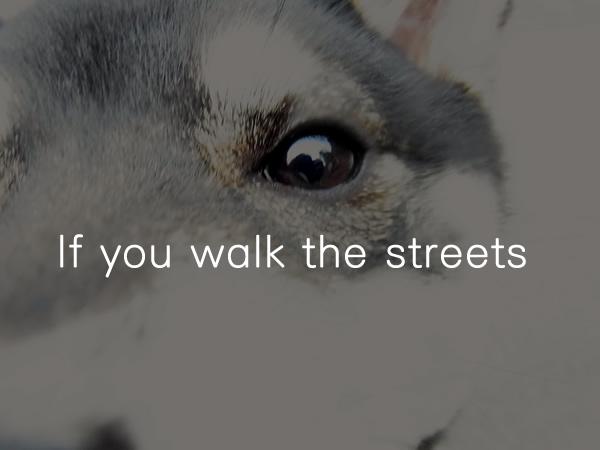 街を歩けば18