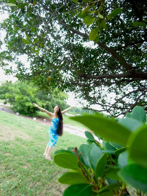 ハワイアンドレス・美しい人
