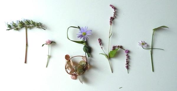 タイトの花文字