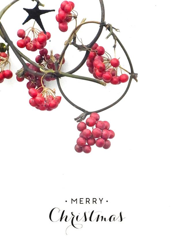 Merry Christmas!2015