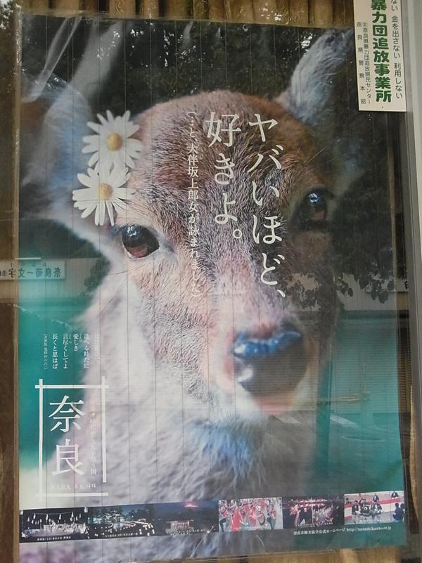 ヤバいほど好きよ鹿のポスター