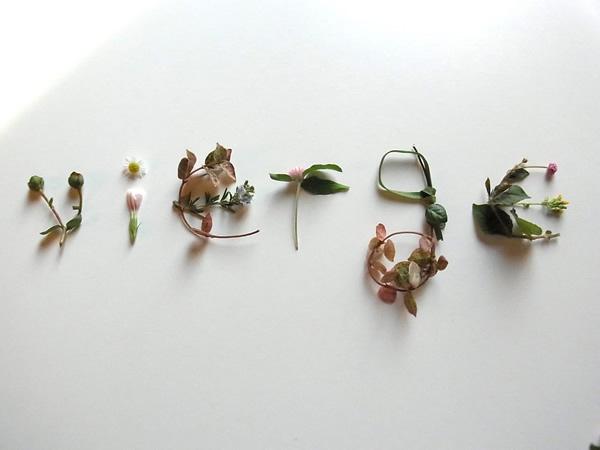 秋の花で作る文字
