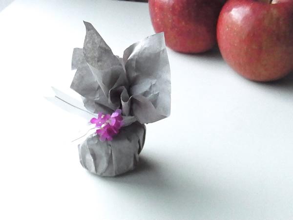 りんごジャムと林檎