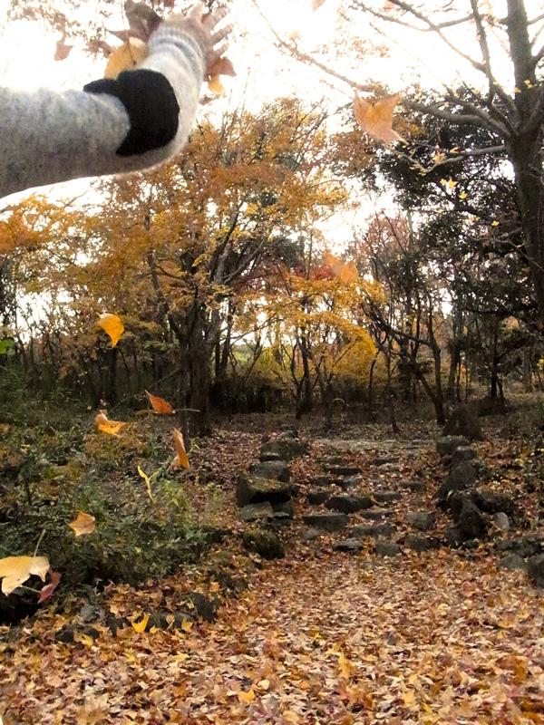 落ち葉を投げるNG写真